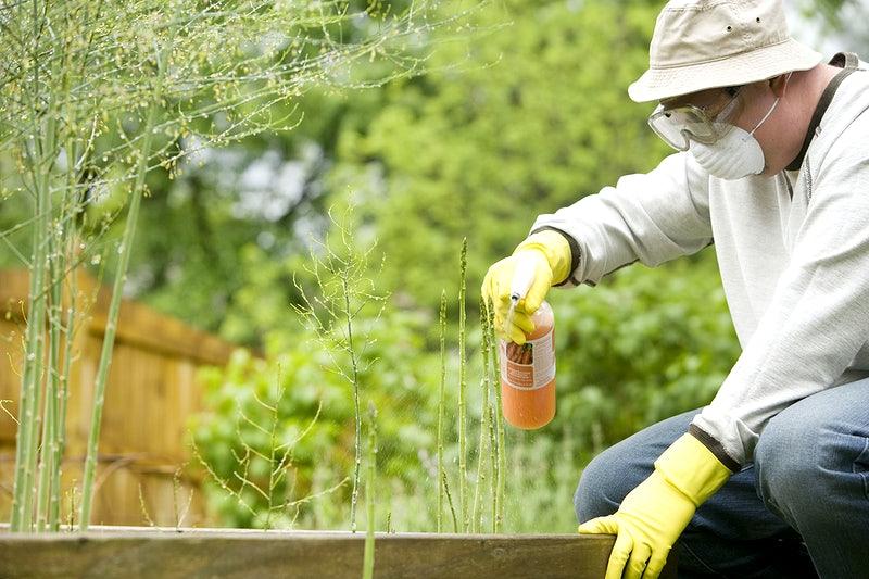 landscape gardeners in Newcastle